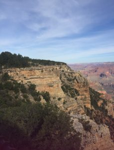The Beautiful Grand Canyon!